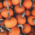 Music Mondays: October