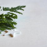 How to Start the Holidays with a Zero Waste Mindset