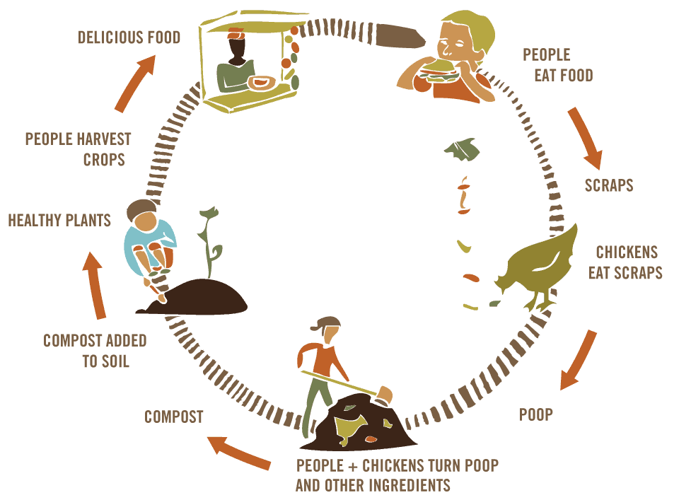 How compost works graphic