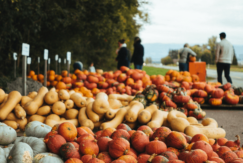 What's in Season? October Produce