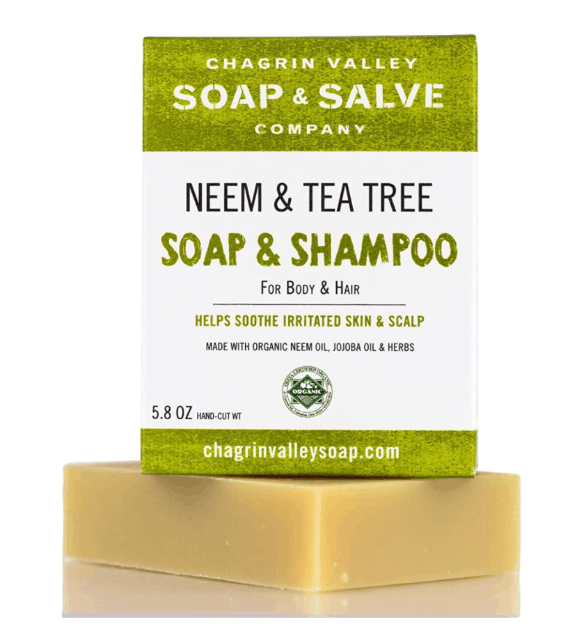 zero waste bar shampoo