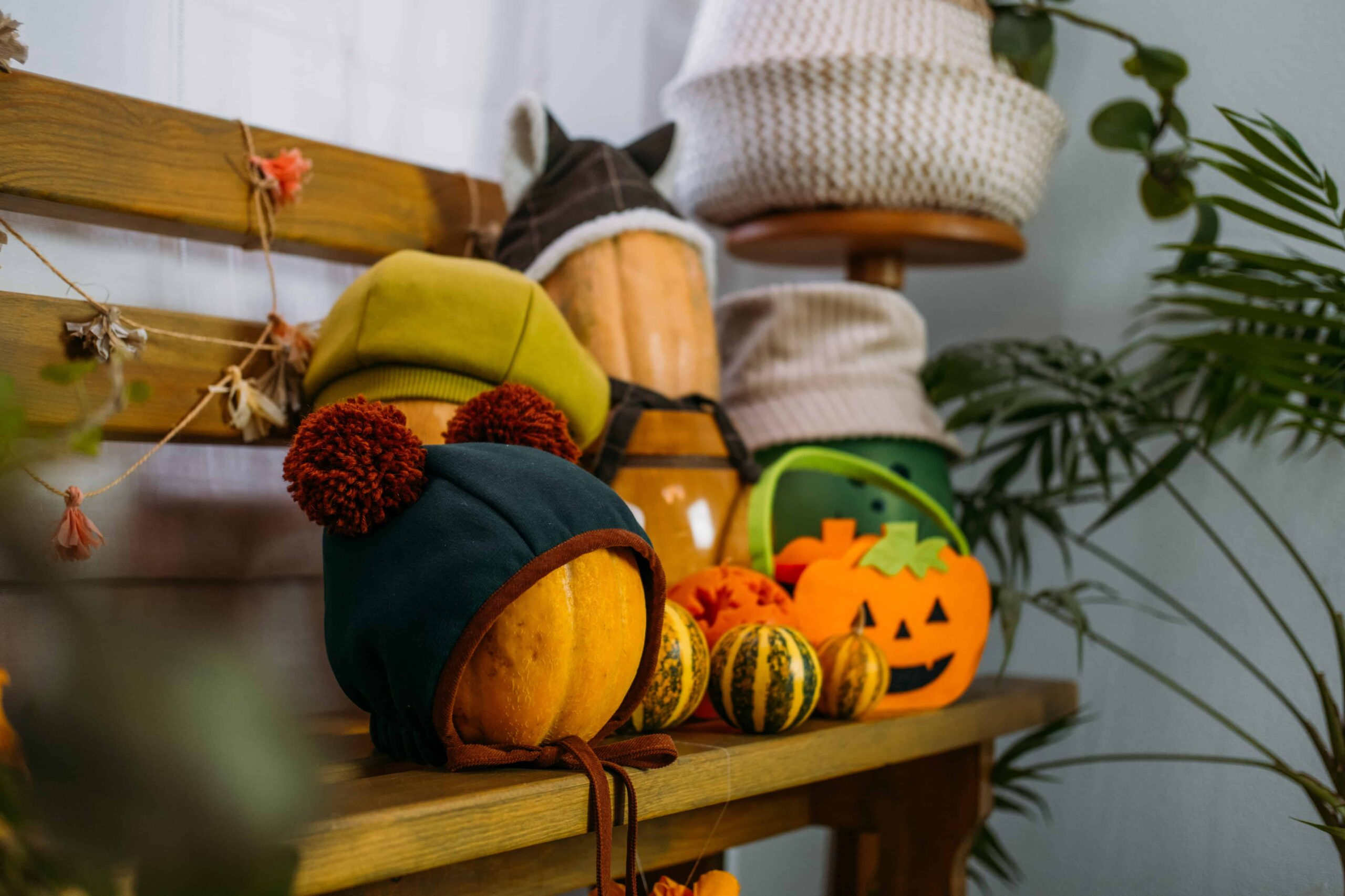Tricks and Treats for an Eco-Friendly Halloween