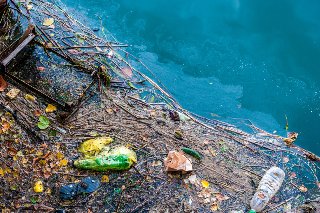 How Does Trash Get in the Ocean? Practical Ways to Tackle the Problem