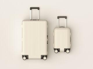 Eco-friendly luggage brands